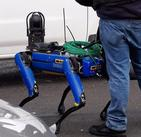 The police of the Bronx began to use robot dogs Boston Dynamics